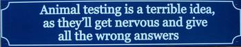 Animal Testing-wrong answers
