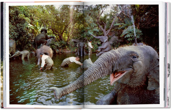Walt Disney's Disneyland by Chris Nichols New Hardcover
