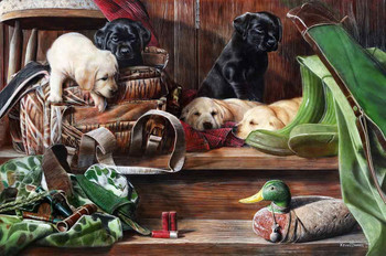 Dog Tired Decoys  by Kevin Daniel
