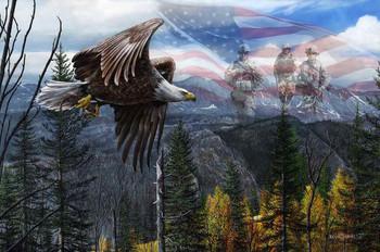 Freedom by Kevin Daniel