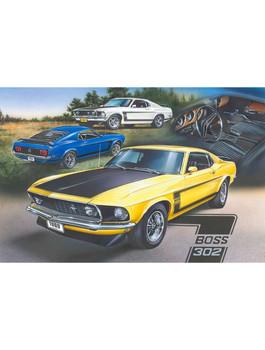 Boss 302 Mustang by Dan Hatala