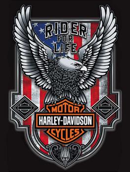 Rider for Life Patriotic Eagle Harley Davidson Metal Sign
