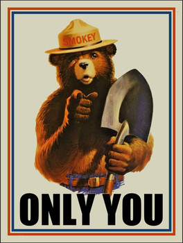 Only You Can Prevent Forest Fires Smoke yBear