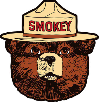 Smokey Bear Head Plasma Metal Sign