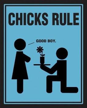 Chicks Rule - Good Boy Metal Sign
