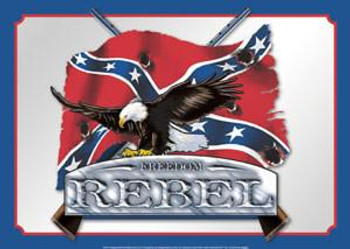 Air Waves - Freedom Rebel Metal Sign