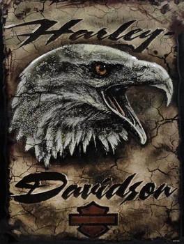 Eagle Head Harley-Davidson Metal Sign