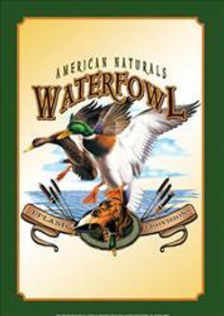 American Naturals-Waterfowl Metal Sign