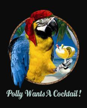 Polly Wants A Cocktail !  Metal Sign