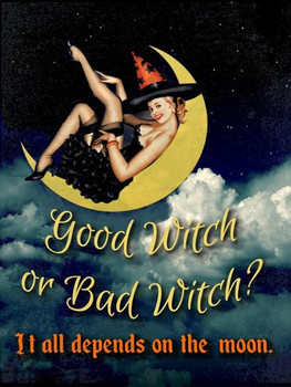 Good Witch or Bad Witch Pin-Up Metal Sign