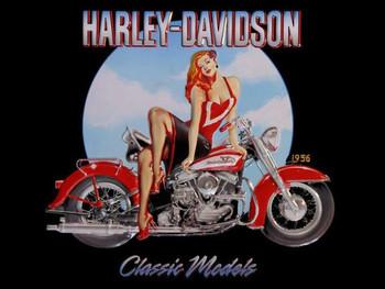 Classic Models Babe Harley-Davidson Metal Sign