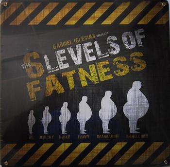 Gabriel Iglesias-6 Levels Fatness