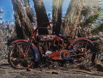 Harley Davidson / Mojave Desert Metal Sign