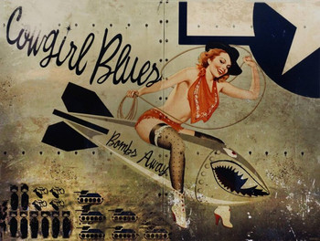 Cowgirl Blues Airplane Art Metal Sign