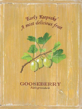 Gooseberry Metal Sign