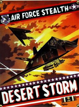 Desert Storm-F117A Stealth Bomber