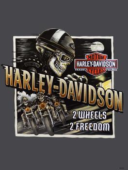 Road Rage Harley-Davidson Metal Sign