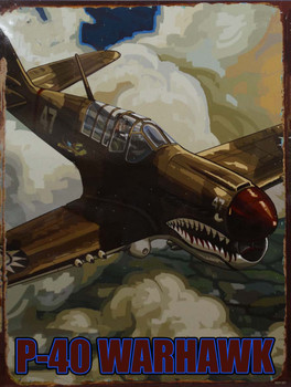 P-40 Warhawk Fighter Plane