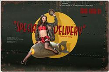 Special Delivery Pin-Up Metal Sign