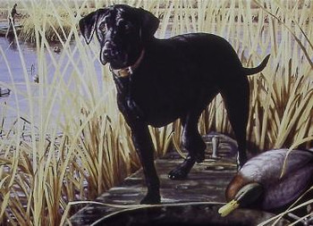 Hadley Black Lab Duck Hunting Metal Sign