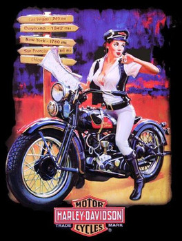 Crossroads Babe Harley Davidson Pin Up