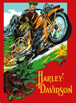 HD Rider (embossed) Metal Sign