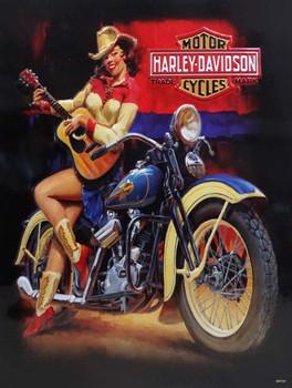 Playin Around Babe Harley-Davidson Metal Sign