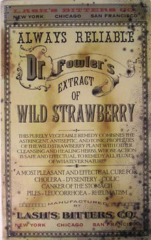 Dr. Fowler-Wild Strawberry