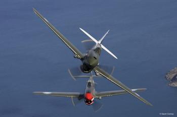 P40E & P40N Airplanes