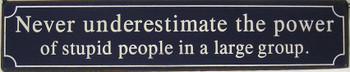 Never Underestimate/Stupid People