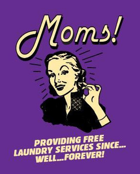 Moms ! Providing Free Laundry Services Metal Sign