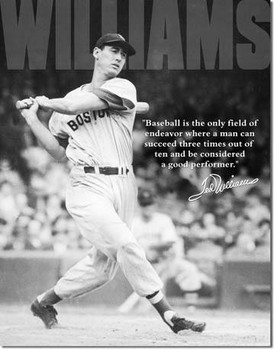 Ted William's Quote Baseball