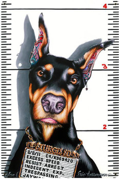 Doberman Felon by Eric Herrman