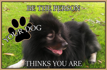 Be the Person Your Dog Thinks You Are MSF370
