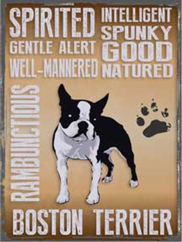Boston Terrier Qualities