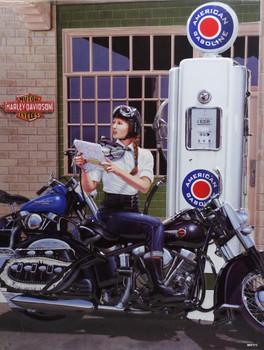 Sturgis or Bust Babe Harley-Davidson Metal Sign