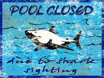Pool Closed Due To Sharks