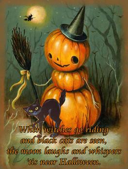 Halloween Pumpkin Witch metal sign