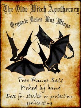 Organic Bat Wings metal sign