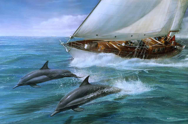 Sailing with Dolphins by Kevin Daniel