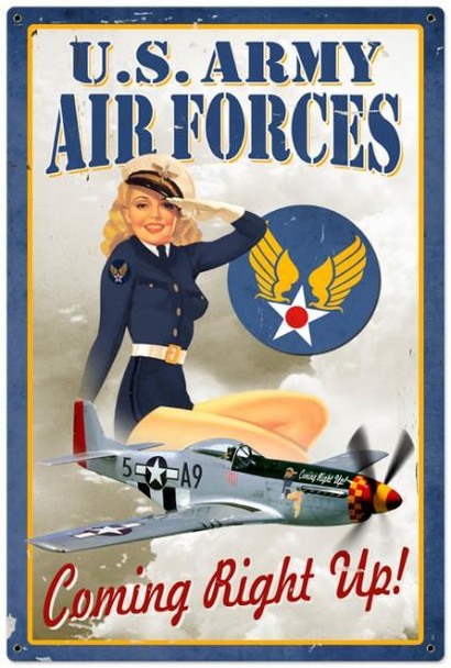 Air Force Pinup (XLarge)