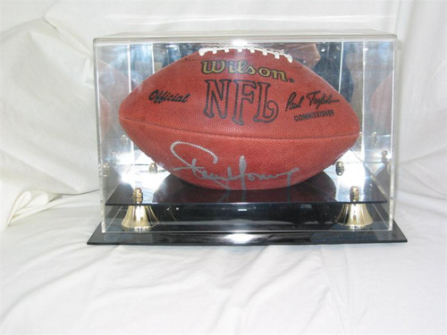 DELUXE FULL SIZE FOOTBALL DISPLAY