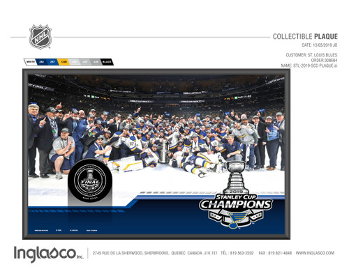 Inglasco 2019 St. Louis Blues Stanley Cup Champions Collectible Wall Plaque with Team Image and Game Puck
