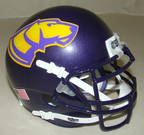 Wisconsin-Stevens Point Pointers Schutt Mini Authentic Football Helmet