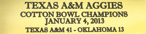 Texas A&M Aggies 2013 Cotton Bowl Champions Football Display Case