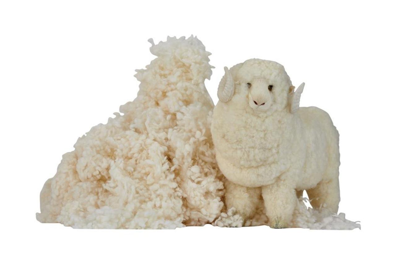 Sleep & Beyond myWool Pillow™ 100% Washable Wool Pillow Wool Filling Raw Wool Filling