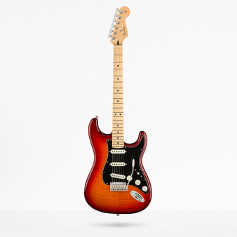 Stratocaster Plus Top Player