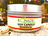 Spiced Cranberry Soy Tin Candle
