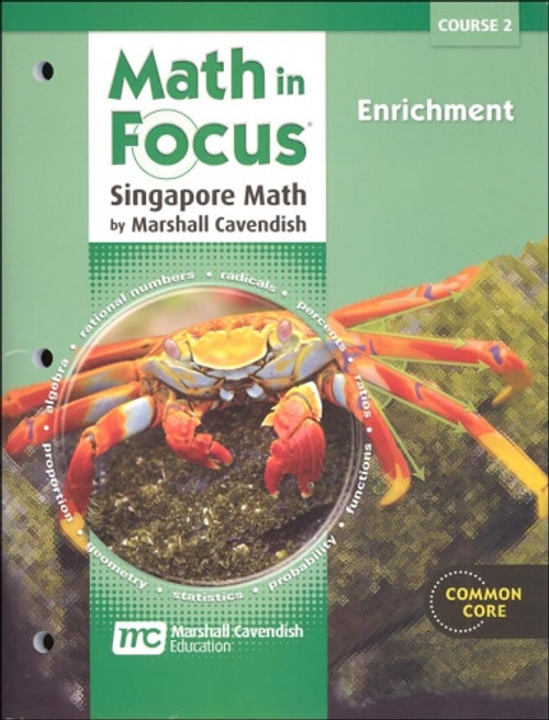7th Grade Math in Focus Enrichment Course 2 (2012)