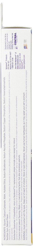 Nylabone Advanced Oral Care Natural Toothpaste | Peanut Butter Flavor 2.5 ounce